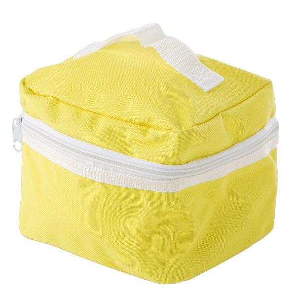 geanta aparat aerosoli Intersid